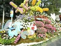 Flower Festival Float 8